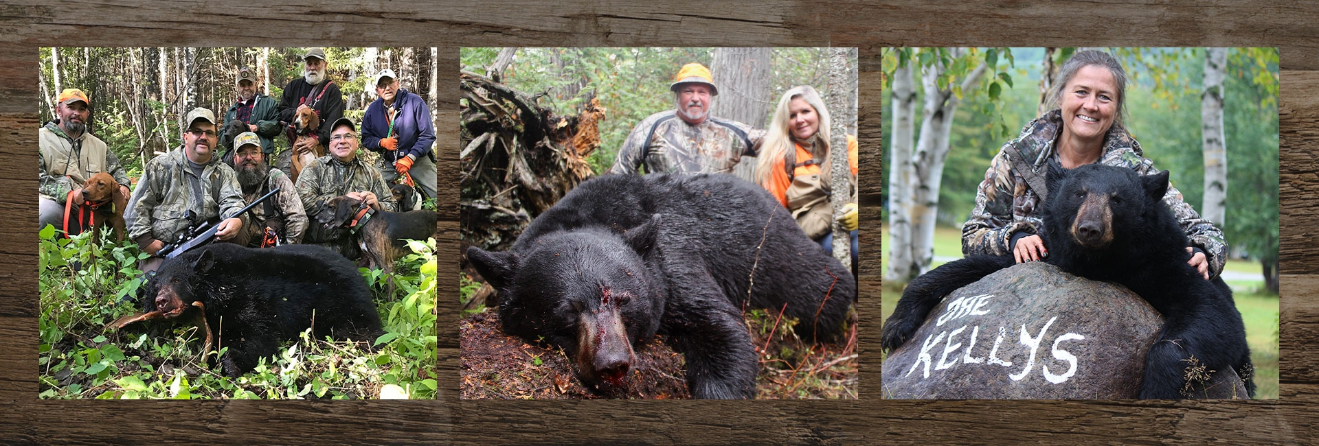 Guided Maine Black Bear Hunts in Allagash