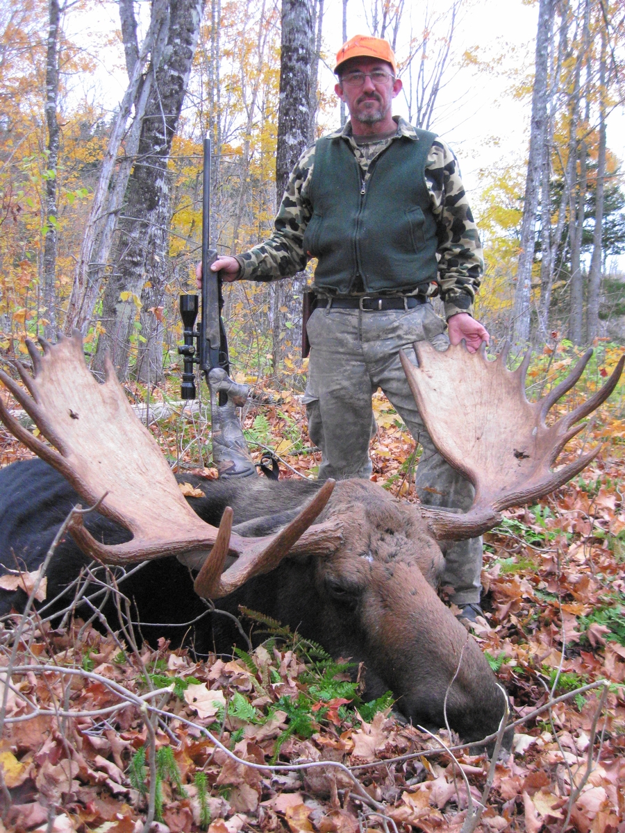 Fully Guided Maine Moose Hunting Trips